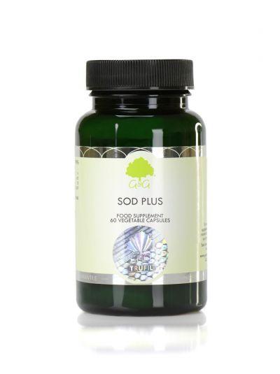 G&G VITAMINS SOD Plus (Superoxide dismutase) - 60 Capsules