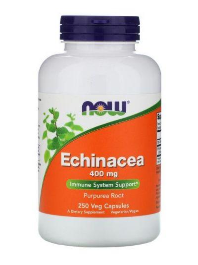 Now Foods, Echinacea, 400 mg, 250 vegetarische Kapseln