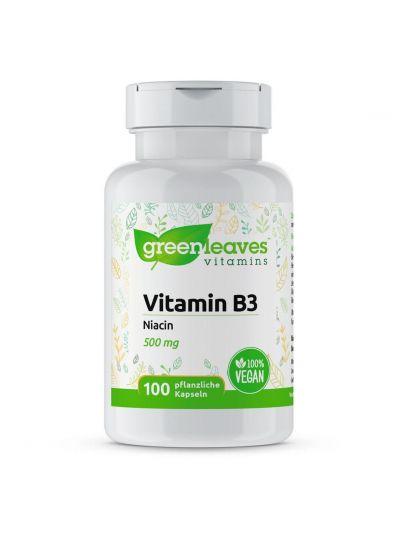 Green leaves VITAMIN B3 NIACIN 500 MG 100 Capsules
